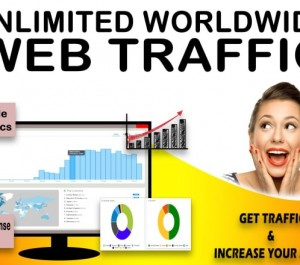 send 60,000 geo targeted website traffic visitors from search engines