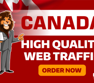 send CANADA GEO Targeted Traffic Visitors to your Website