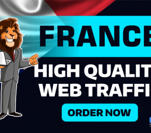 send FRANCE GEO Targeted Traffic Visitors to your Website