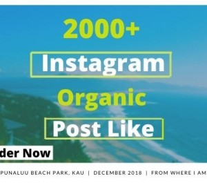 increase your Instagram Likes