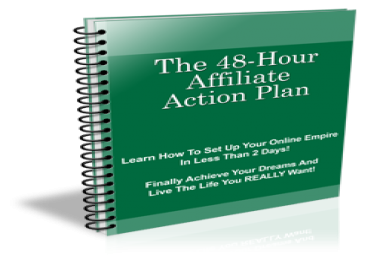 give you plr to rebrandable ebook 48 hour action plan easy affiliate, website and graphics
