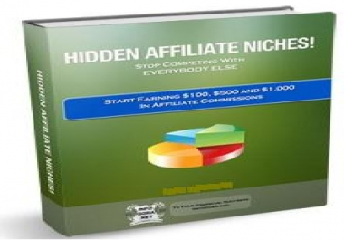 Show You How to Use Hidden Affiliate Niches to Making Money