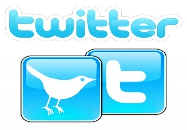 add more than 25000+ twitter followers, without needing your password in 24 hours