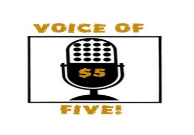 provide a professional voice over