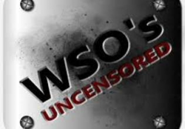 provide you unlimited access to get new and old WSO