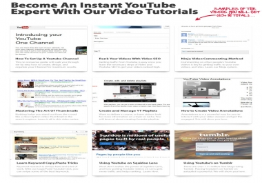 give you 65 YouTube PLR Training Videos for 2013