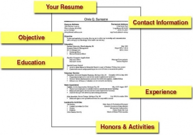 create a great looking resume or cover letter