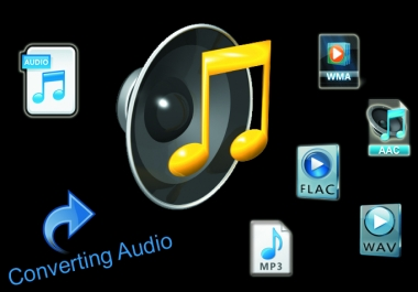 do any AUDIO convert work