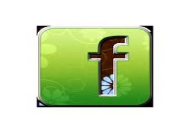 give you fans and likes in facebook, 250 fans and likes