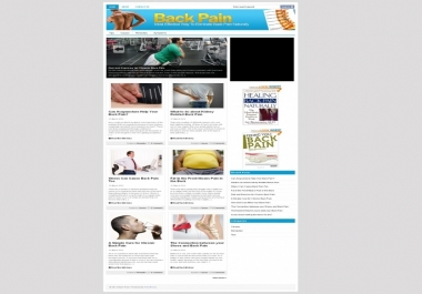 give you Back Pain PLR Niche Blog