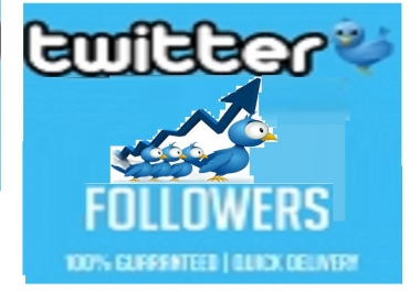 give you 1000 real Twitter Followers on your Twitter account