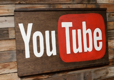 provide 1000 YOUTUBE views for Your Youtube Video