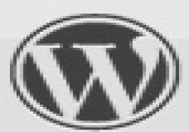 Point the DNS, Install Wordpress and Your Chosen Theme