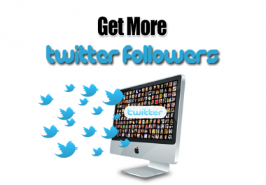 Give You 1,000+ *HQ & Staying* Twitter Followers 12 To 24-Hours