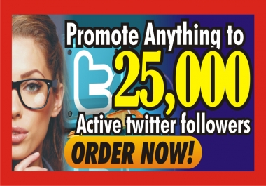promote your link, ads to my 25,000 twitter followers