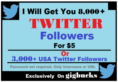 Get You 8000 plus Twitter Followers