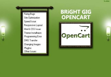 fix any issue in opencart