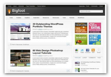provide Foot Theme for wordpress