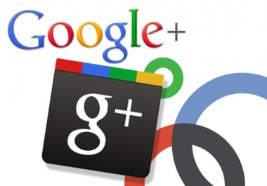 provide REAL Genuine 200 Google Plus Followers