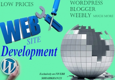 make a Professional WORDPRESS site for you