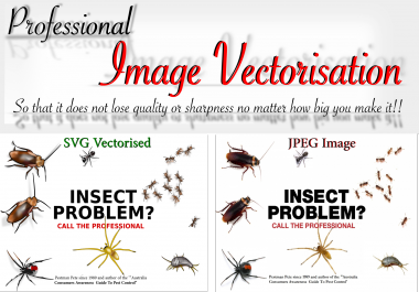 professionally Vectorise your Complex Image professionally Vectorise your Complex Image