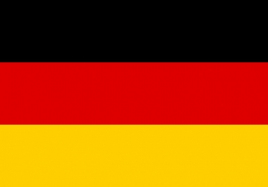 translate 800 words from English to German in 24 hours