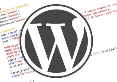 modify your wordpress blog/website as per your needs