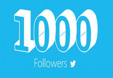 give REAL 1000 Twitter Followers