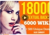 do 18000 backlinks from 6000 wiki to website blog or youtube for SEO on google
