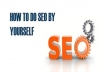 teach you how to do SEO yourself
