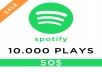 make 1000 Spotify plays for 10 dollar