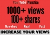 do your youtube video promotion