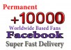 Get 8,000 Facebook Page Likes in your business Page
