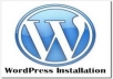 install wordpress and setup theme exactly like demo