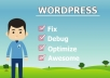 do any kind of WordPress Issues in only 12 hours
