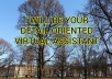 be your detail oriented virtual assistant for 6 hours