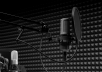 record a professional female voiceover with background music