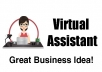 be your Virtual Assistant and do data entry