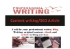 do content writing for articles, blog posts, ebook and SEO
