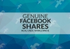 promote your Facebook page for you