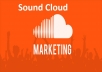 give MUSIC promotion for itunes, soundcloud, youtube , songs