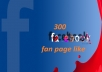 give you Facebook 300  like website