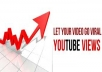 provide 3500 FAST Youtube Video Views just