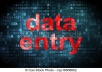 do data entry/data mining task and online research