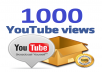 send 1000 high retention Youtube Views and 50 Likes to your video