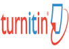 give you turnitin report