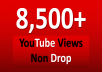 Give You 8500+ NON Drop Youtube Views