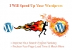 do a Complete Wordpress Speed Optimization for