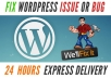 fix one WordPress issue or WordPress problem for each gig