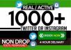 add 1000 instagram likes or 1000 instagram followers in 48 hours